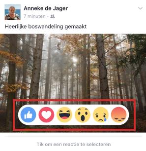 Facebook reacties