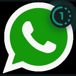 WhatsApp, eenmalige beelden