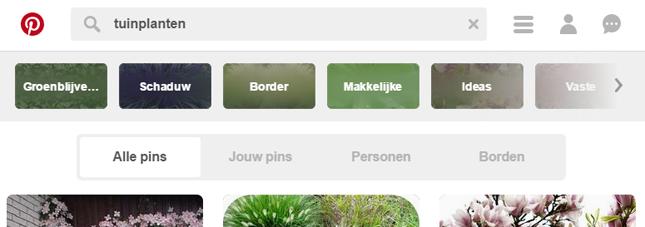 Pinterest, zoekresultaten