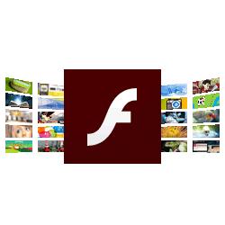 flashplayer(1)