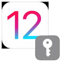 ios12-automatisch-wachtwoorden-invullen